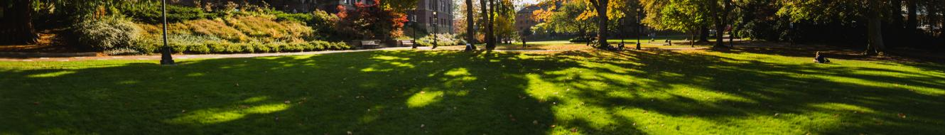 Sunlight shining on the front of a building and a green lawn during the fall